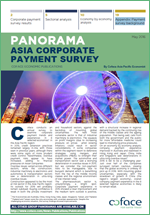 Asia Corporate Payment Survey