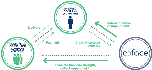 How does credit insurance work?
